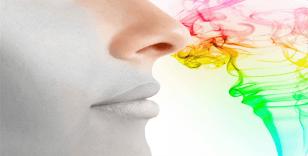 Kokular vücudumuzu ve zihnimizi nasıl etkiliyor
