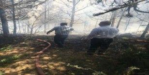 Kızılcahamam Üyücek yaylasında yangın