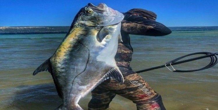 Rekortmen dalgıç, boyu kadar balığı avladı