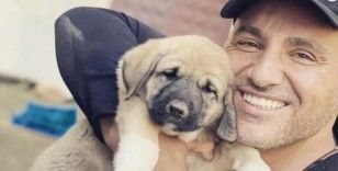 Köpek barınağına yardım etti