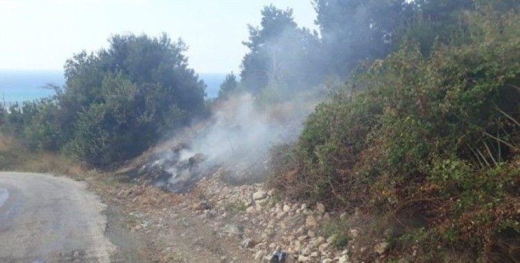 Samandağ'da kuru ot yangını korkuttu