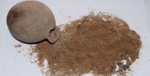 """Tarihi kazılarda """"Çömlek"""" içinde 3 bin yıllık buğday taneleri çıktı"""