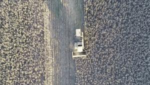 Bilinçli Yapılan Tarım Kazandırıyor