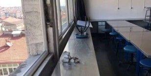 Tahliye kararı verilen Diş Hekimliği Fakültesi'nde oluşan hasar, böyle görüntülendi