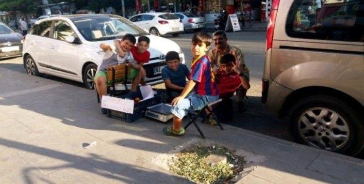 Öğrenciler girişimcilik dersinde domates sattı