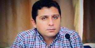 Bartın'da 'Orman kaçakçığı' operasyonu: 6 tutuklu