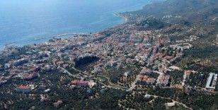 Kazdağları'nda villa yapımı için 2,5 milyon zeytin ağacı kesildi, acı tablo havadan görüntülendi
