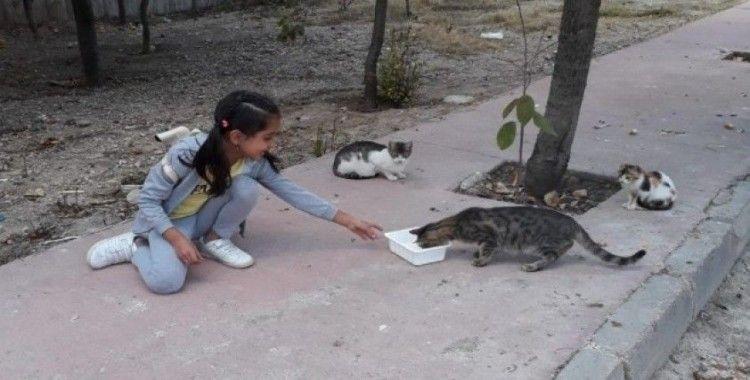 Minikler, 4 Ekim Dünya Hayvanları Koruma Günü'ne dikkat çekti