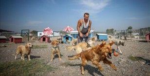 Terk edilmiş köpeklerin patilerinden tutuyor