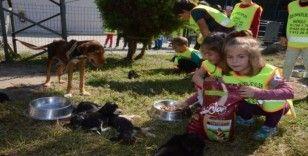 Öğrenciler, hayvan dostlarının yanında