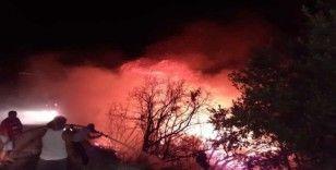 Samandağ'da otluk alanda çıkan yangın korkuttu