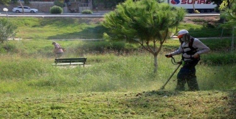 Toroslar'da park ve yeşil alanlarda bakım