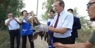 Hayvanları Koruma Günü'nde, doğal ortamlarına bırakıldılar