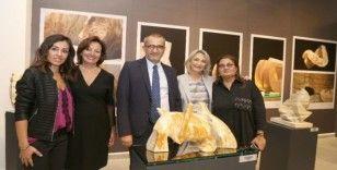 Zülfü Livaneli Kültür Merkezi'nde sezonun ilk sergisi