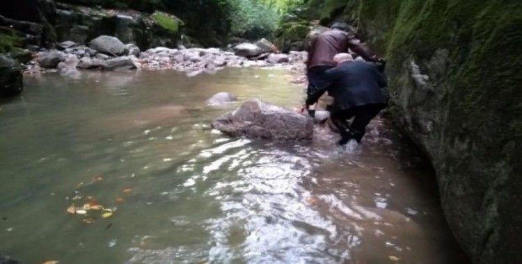 Şelalede ayağı kayan il genel meclisi üyesini muhtar kurtardı