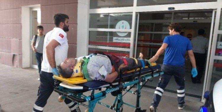 Ağaçtan düşen adam yaralandı