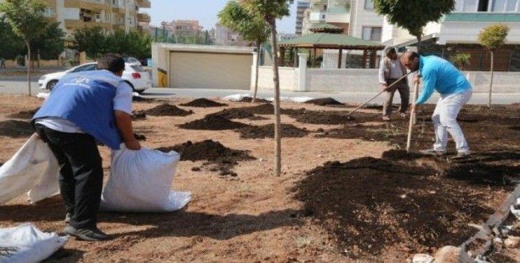 Haliliye'de parklara çim ekimi yapılıyor