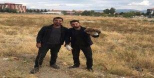 Isparta'da yaralı halde bulunan 'Kızıl Şahin' doğaya salındı