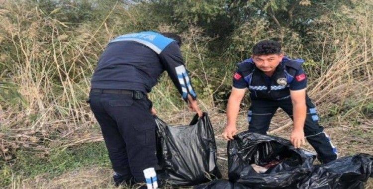 Çanakkale'de torba torba eşek eti ele geçirildi