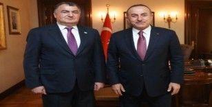 Ahıska Türklerinden Barış Pınarı Harekatı'na destek