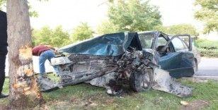 Elazığ'da otomobil ağaca çarptı: 1 yaralı