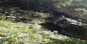 Direksiyon hakimiyeti kaybolan otomobil devrildi: 1 ölü