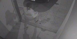 Eskort sitesinden bulduğu 5 kadını gasp etti