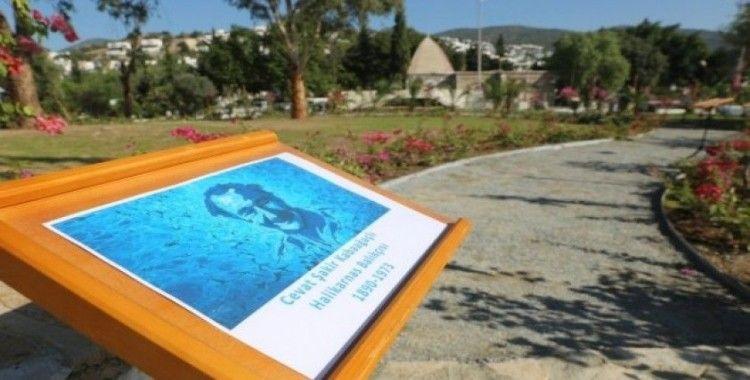 Bodrum'a Halikarnas Balıkçısı Arboretumu kurulacak