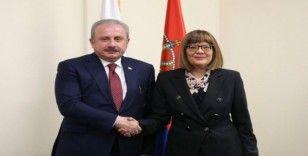 Şentop, Sırbistan Ulusal Meclis Başkanı Gojkoviç ile görüştü