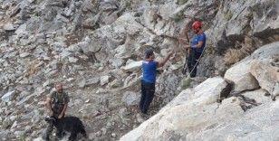 Sason'da kayalıkta mahsur kalan keçi 7 saatlik çalışmayla kurtarıldı