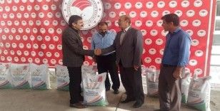 Malatya'da çiftçilere yüzde 50 hibe destekli yonca tohumu