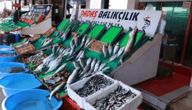 Balık tezgahları boş, vatandaşlar dertli