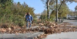 Belediyeden sonbahar temizliği
