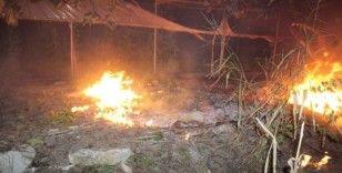 Anız yangını seraya sıçradı