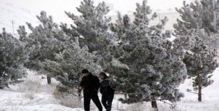 Doğu Anadolu'da soğuk hava: Göle - 17