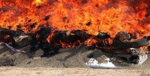 Afganistan'da 28 ton uyuşturucu yakılarak imha edildi