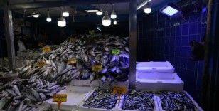 Balıkçıların mavi ışık hilesini zabıta engelledi