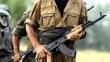Şırnak'ta bir PKK'lı terörist etkisiz hale getirildi