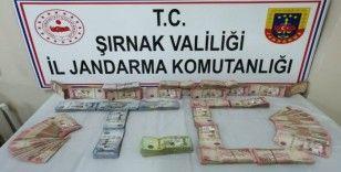 Şırnak'ta uyuşturucu ve kaçakçılık operasyonu: 33 gözaltı