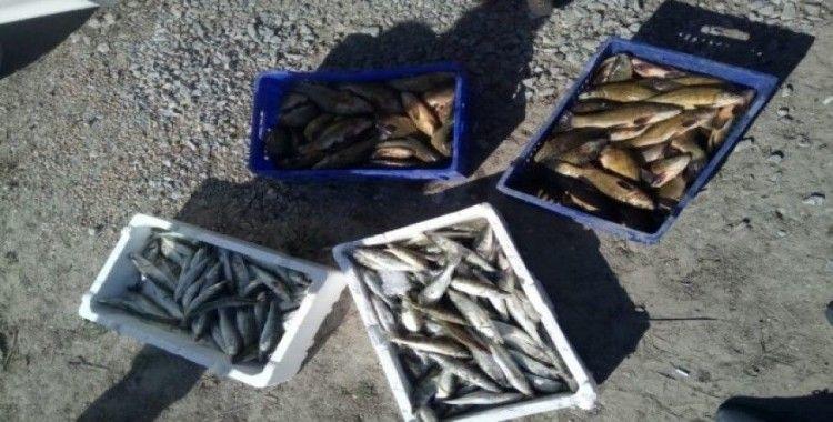 Suğla Gölü'nde boy limiti altında yavru levrek avına ceza