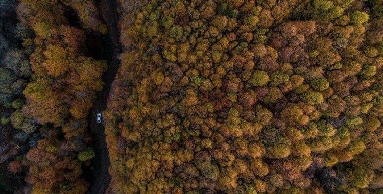 Kışın gözdesi Uludağ sonbaharda da göz kamaştırıyor