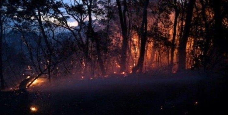 Avustralya'da orman yangını, 2 ölü, 100 ev yıkıldı