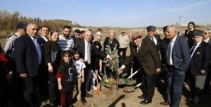 Atatürk için '1001' adet zeytin fidanı dikildi