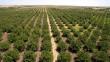 Kastamonu'da 56 ayrı noktada 133 bin fidan toprakla buluştu