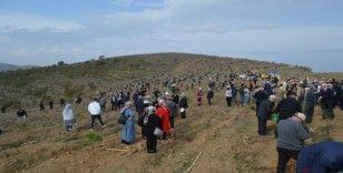 Her yıl Kıbrıs kadar arazi erozyona kurban gidiyor