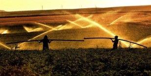 """Aydın: """"Bitlis'te 7 bin 500 dekar tarım arazisi sulandı"""""""