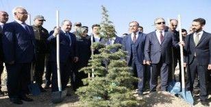 Gezi Parkı'nda birkaç ağaç için sokağa çıkanların artan orman varlıkları ile ilgili tek bir sözünü duyamazsınız