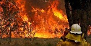 Avustralya'daki orman yangınları Yeni Zelanda'ya doğru ilerliyor