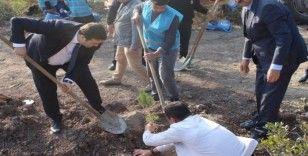Ceyhan'da yükümlüler fidan dikim kampanyasına katıldı
