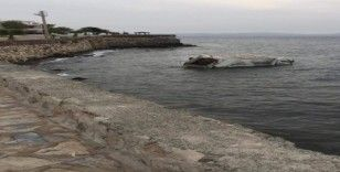 İzmir'de çöp kamyonu denize uçtu: 1 yaralı